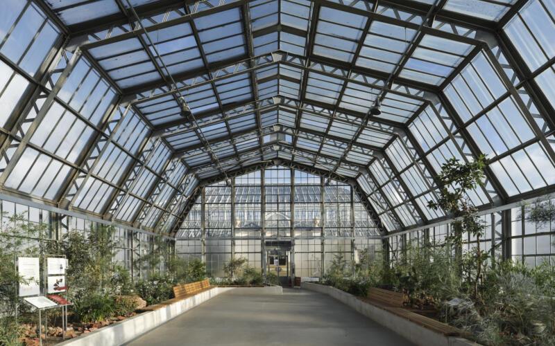 Kew Gardens Arboretum Nursery